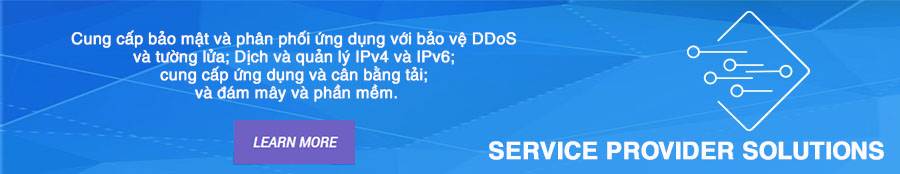 Service Provider Solutions _A10 Networks