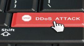 Radware dẫn đầu IDC MarketScape cho giải pháp phòng chống DDoS