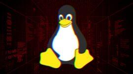 Lỗi Linux mới cho phép hacker chiếm quyền kết nối VPN được mã hoá