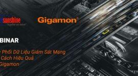 Webinar Gigamon